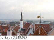 Купить «Вид на Старый город в Таллине, Эстония», эксклюзивное фото № 3219027, снято 29 октября 2011 г. (c) Литвяк Игорь / Фотобанк Лори
