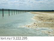 Купить «Соленое озеро Баскунчак», фото № 3222295, снято 3 мая 2011 г. (c) Надежда Болотина / Фотобанк Лори
