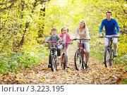 Семейная прогулка на велосипедах в парке. Стоковое фото, фотограф Raev Denis / Фотобанк Лори