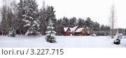 Деревянный дом в зимнем лесу. Стоковое фото, фотограф Армен Богуш / Фотобанк Лори