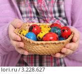 Окрашенные пасхальные яйца в плетеной корзинке. Стоковое фото, фотограф Дарья Петренко / Фотобанк Лори