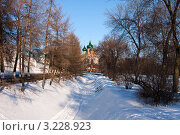 Купить «Ярославль, Храм Архангела михаила», фото № 3228923, снято 28 января 2012 г. (c) ElenArt / Фотобанк Лори