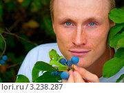 Мужчина ест терн. Стоковое фото, фотограф Елена Алексеева / Фотобанк Лори