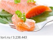 Купить «Соленый лосось», фото № 3238443, снято 12 мая 2011 г. (c) Peredniankina / Фотобанк Лори