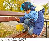 Купить «Портрет 2-х летнего мальчика на улице осенью», эксклюзивное фото № 3240027, снято 28 октября 2011 г. (c) Олеся Сарычева / Фотобанк Лори