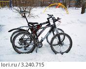 2 спортивных велосипеда на зимнем фоне (2011 год). Редакционное фото, фотограф Трошина Елена / Фотобанк Лори