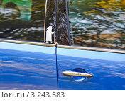 """Купить «Фрагмент автомобиля с наклейкой """"Бабушка""""», эксклюзивное фото № 3243583, снято 8 октября 2011 г. (c) Алёшина Оксана / Фотобанк Лори"""