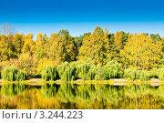 Купить «Золотая осень», фото № 3244223, снято 10 октября 2010 г. (c) Екатерина Овсянникова / Фотобанк Лори