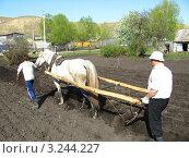 Купить «Мужчина с плугом запряженным в лошадь пашет поле», фото № 3244227, снято 11 мая 2008 г. (c) Равиль Шангараев / Фотобанк Лори