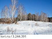 Купить «Зимняя тропинка», фото № 3244391, снято 11 февраля 2012 г. (c) Александр Тараканов / Фотобанк Лори