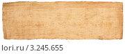 Папирус. Стоковое фото, фотограф Сергей Илясов / Фотобанк Лори