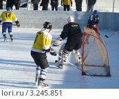 Купить «Спортивная игра в хоккей на льду», фото № 3245851, снято 28 января 2012 г. (c) Сергей Овчинников / Фотобанк Лори