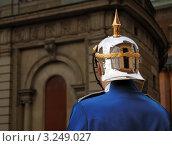 Солдат церемониального караула у королевского дворца. Стокгольм, Швеция. (2011 год). Стоковое фото, фотограф Jelena Dautova / Фотобанк Лори
