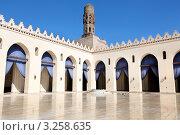 Купить «Вид на внутреннее пространство Мечети Ал-Хаким на улице Ал-Муиз, Каир, Египет», фото № 3258635, снято 21 января 2012 г. (c) Николай Винокуров / Фотобанк Лори