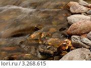 Горная река, течение воды крупным планом. Стоковое фото, фотограф Александр Мартынец / Фотобанк Лори