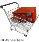Купить «Магазинная тележка с домиком в ней», иллюстрация № 3271343 (c) Chris Lamphear / Фотобанк Лори