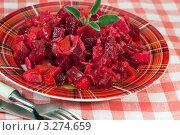 Купить «Русский салат винегрет», фото № 3274659, снято 5 июля 2011 г. (c) ElenArt / Фотобанк Лори