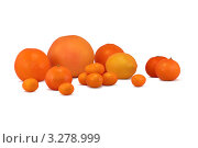 Цитрусовые фрукты. Стоковое фото, фотограф Диана Гарифуллина / Фотобанк Лори