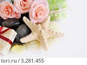 Купить «Аксессуары для душа», фото № 3281455, снято 12 февраля 2012 г. (c) Липатова Ольга / Фотобанк Лори