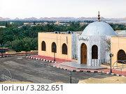 Купить «Вид на фасад мечети в центре оазиса Сива, Египет», фото № 3282651, снято 24 января 2012 г. (c) Николай Винокуров / Фотобанк Лори