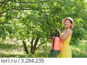 Купить «Женщина опрыскивает ветви деревьев», фото № 3284235, снято 3 июля 2011 г. (c) Яков Филимонов / Фотобанк Лори