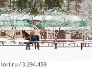 Купить «Лошадь на территории конюшни в усадьбе художника В.Д.Поленова зимой», эксклюзивное фото № 3294459, снято 25 февраля 2012 г. (c) Игорь Низов / Фотобанк Лори