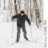 Мужчина на лыжах поднимается в горку в зимнем лесу в сильный  снегопад. Стоковое фото, фотограф Игорь Низов / Фотобанк Лори