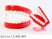 Купить «Маленькая игрушечная челюсть на пластмассовых ножках и большая челюсть», фото № 3300491, снято 1 октября 2010 г. (c) Losevsky Pavel / Фотобанк Лори