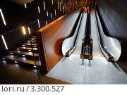 Купить «Эскалатор и лестница с подсветкой», фото № 3300527, снято 8 января 2011 г. (c) Losevsky Pavel / Фотобанк Лори