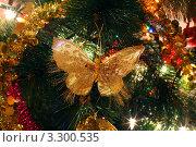 Купить «Блестящая бабочка на новогодней елке», фото № 3300535, снято 12 января 2011 г. (c) Losevsky Pavel / Фотобанк Лори