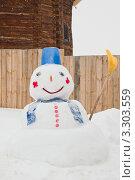 Купить «Снеговик», эксклюзивное фото № 3303559, снято 25 февраля 2012 г. (c) Оксана Гильман / Фотобанк Лори
