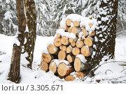 Зимняя заготовка дров. Стоковое фото, фотограф Ольга Ларина / Фотобанк Лори