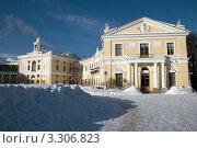 Купить «Большой Павловский дворец зимой», фото № 3306823, снято 12 февраля 2011 г. (c) Светлана Кудрина / Фотобанк Лори