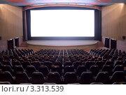 Купить «Большой экран в кино-комплексе», фото № 3313539, снято 22 апреля 2010 г. (c) Василий Козлов / Фотобанк Лори