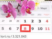 Купить «Праздник 8 марта», эксклюзивное фото № 3321043, снято 16 февраля 2020 г. (c) Яна Королёва / Фотобанк Лори