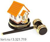 Купить «Судейский молоток и домик», иллюстрация № 3321719 (c) Лукиянова Наталья / Фотобанк Лори
