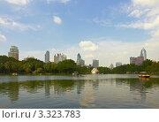 Купить «Пруд в парке Лумпини. Бангкок, Таиланд», фото № 3323783, снято 2 октября 2011 г. (c) Виктор Савушкин / Фотобанк Лори