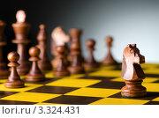 Купить «Деревянные шахматные фигуры на доске», фото № 3324431, снято 20 января 2012 г. (c) Elnur / Фотобанк Лори