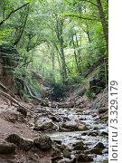 Ущелье в горах Крыма (2008 год). Стоковое фото, фотограф Вадим Ярошик / Фотобанк Лори