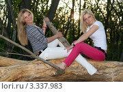 Купить «Две светловолосые молодые женщины сидят на сухом бревне в лесу», фото № 3337983, снято 5 мая 2010 г. (c) Сергей Сухоруков / Фотобанк Лори