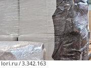 Купить «Вещи, упакованные в прозрачную пленку», фото № 3342163, снято 6 мая 2011 г. (c) Владимир Рублев / Фотобанк Лори