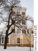 Купить «Гомельский дворцово-парковый ансамбль», фото № 3347635, снято 25 января 2010 г. (c) Михаил Ястребов / Фотобанк Лори
