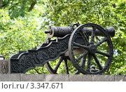 Купить «Старинная пушка на декоративном чугунном лафете», эксклюзивное фото № 3347671, снято 10 августа 2009 г. (c) Илья Галахов / Фотобанк Лори
