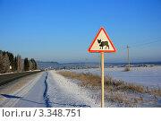 "Купить «Знак возле дороги ""Перегон домашних животных""», фото № 3348751, снято 10 февраля 2012 г. (c) Константин Аникин / Фотобанк Лори"