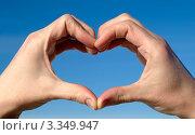 Купить «Руки  человека  сложенные  в форме сердца», фото № 3349947, снято 19 февраля 2019 г. (c) Алексей Кокоулин / Фотобанк Лори