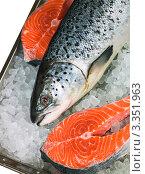 Купить «Красная охлажденная рыба на подносе со льдом», фото № 3351963, снято 17 июля 2008 г. (c) Олег Жуков / Фотобанк Лори