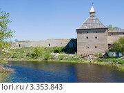 Купить «Ладожская крепость. Воротная башня», эксклюзивное фото № 3353843, снято 17 мая 2008 г. (c) Александр Щепин / Фотобанк Лори