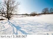 """Купить «Музей-усадьба """"Ясная Поляна"""".Зимний пейзаж  с деревом и видом на деревню», эксклюзивное фото № 3368067, снято 16 марта 2012 г. (c) Игорь Низов / Фотобанк Лори"""