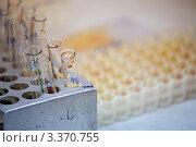 Купить «Биохимическая лаборатория. Пробирки с кровью и плазмой», фото № 3370755, снято 9 февраля 2012 г. (c) Ольга Денисова / Фотобанк Лори