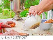 Купить «Чаепитие на даче с самоваром», фото № 3378067, снято 23 января 2020 г. (c) Алёшина Оксана / Фотобанк Лори